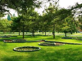 国瑞·四季园 |首付14.3万起!三公园环伺,生活在繁花