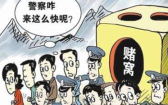火锅店暗藏赌窝  警方抓获21名涉赌人员