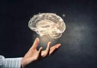 北京脑科学与类脑研究中心建设工作全面启动
