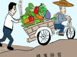 """临汾市尧都区贺家庄打造现代""""世外桃源"""""""