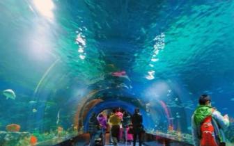 动物园将新建3万平方米海洋馆 建8个动物散放区
