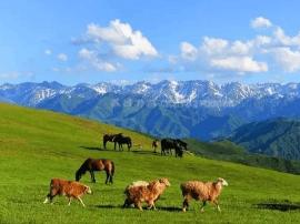 巴尔鲁克山 每一片风景都令人神往