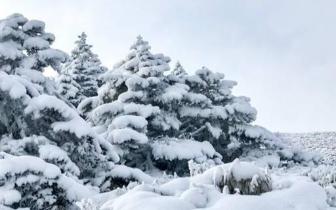 不是光头强 是光头山 奇妙的冰雪之旅