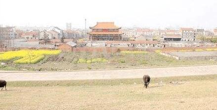 纪录片《千年佛缘》湖北拍摄任务在荆州天王禅寺完成