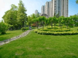 中国首次公布绿色发展指数 福建位居全国第二名