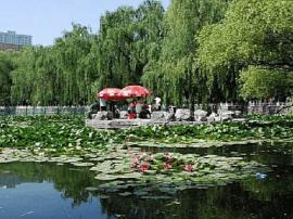 龙潭公园新增儿童活动乐园 新增绿化面积1.2万㎡
