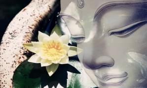 佛教为什么要信仰三宝?