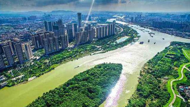 珠三角将建成首个国家森林城市群