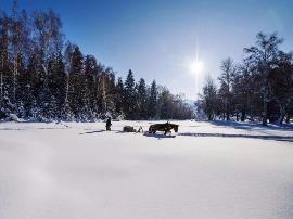 一月来新疆可可托海看雪 感受冷