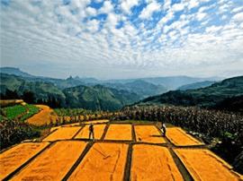 农村土地利用新局:补充耕地质量提升困地区土地增值
