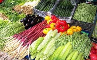 """邯郸市全面推行食用农产品""""合格证""""管理"""