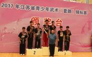 """省武术套路锦标赛 泰州队""""斩获""""两奖牌"""
