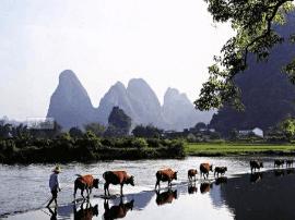 广西最美的4个5A级旅游景区,你都去过吗?