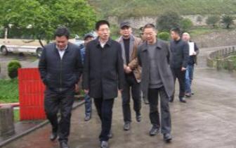 南川区长张兴益:推动中医药产业高质量发展