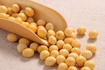 秋季养生吃什么?这3种豆类最适合