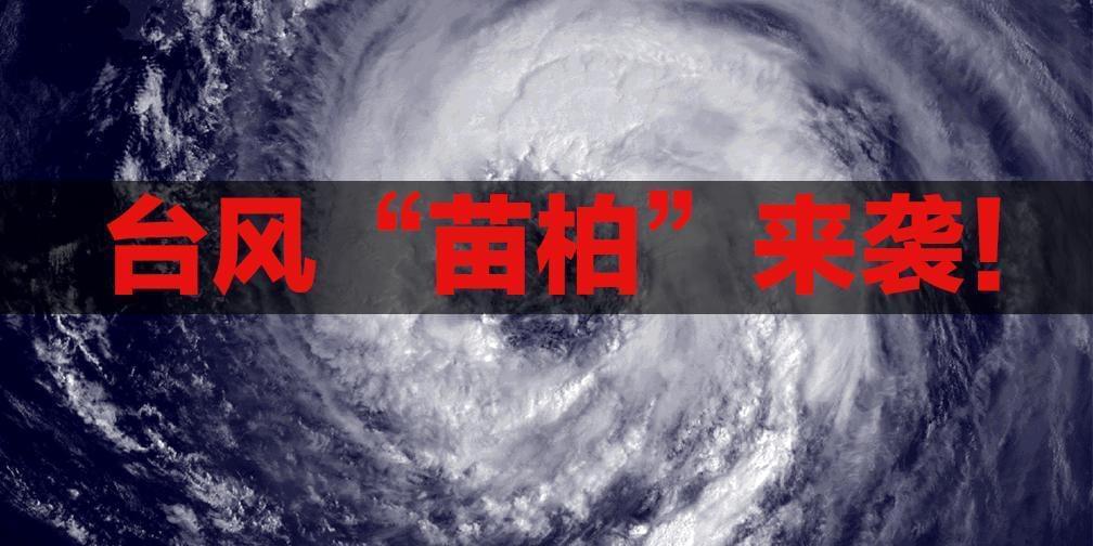台风苗柏来袭!江门边检多措保海港平安