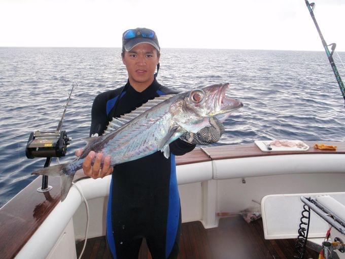 在巴哈马群岛捕获的各种怪鱼