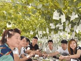 旅游古镇大泽山:古韵新姿的田园风光