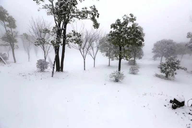 融雪之前 来武陵山大裂谷跟大雪来场亲密接触吧!