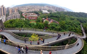 """福州主城区撑起""""绿伞"""" 出行500米可见公园"""