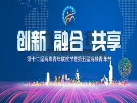 第十二届两岸青年联欢节暨第五届海峡青年节