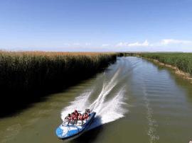 新疆博斯腾湖-生态美景入画来