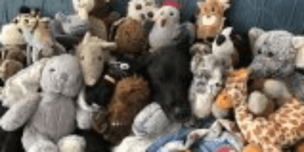 一只狗狗,十年来收集四十多个娃娃,每个都像新的一样