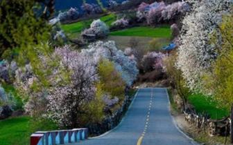 中国即将开通世界最美的自驾公路!