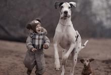 摄影师拍摄萌娃与大狗亲密互动温