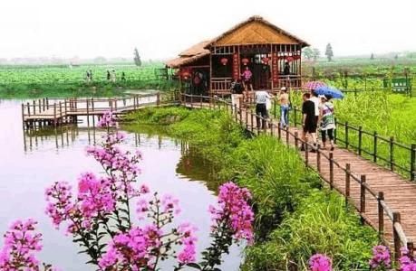 咸安区贺胜桥镇发展乡村旅游 美丽乡村迎客来