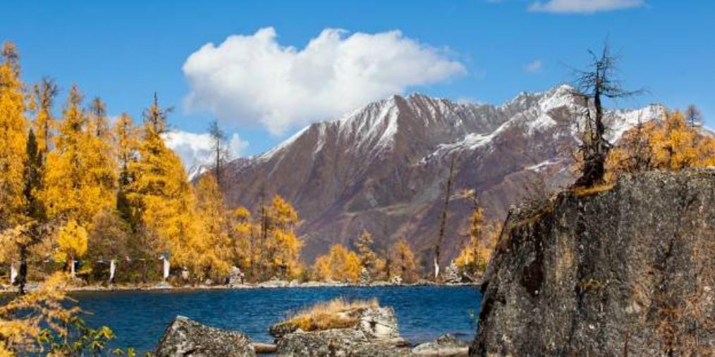 美到爆!新疆尚未被开发的6大原生态景之地