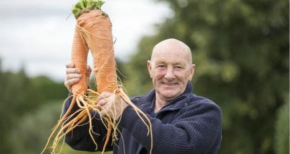 """英国举办""""巨蔬""""大赛 这些蔬菜已成精!"""