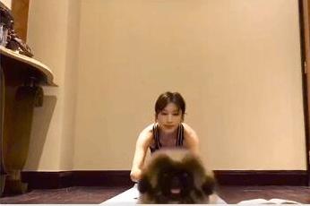张俪晒健身视频遭爱犬抢镜 自侃:被龙哥秒杀