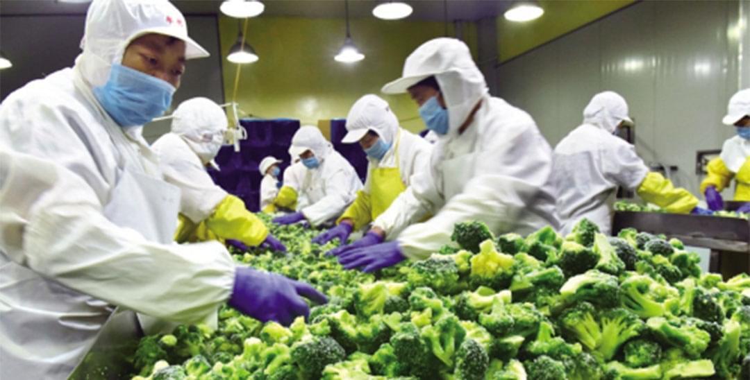 速冻蔬菜销往上海