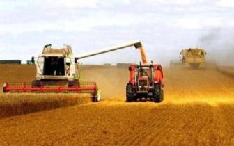 黑龙江粮食产能不断提升 连续7年居全国首位