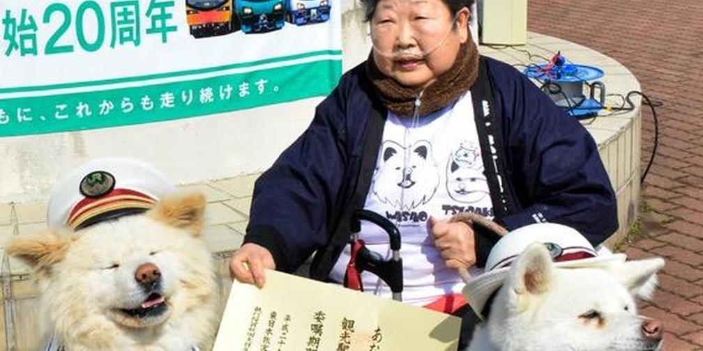 """""""丑萌犬""""Wasao的主人菊谷节子因病去世"""