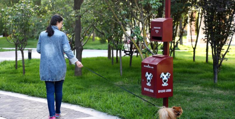 石家庄:小区有了狗狗专用便桶