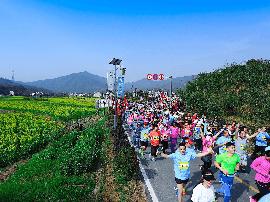近万跑者畅跑花海云崖 油菜花马拉松浪漫开跑
