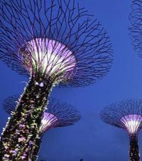 第38期:新加坡 花园都市之魅