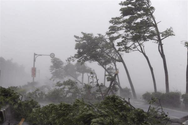 台风离去 全省气温逐日上升 农作物旱情不可忽视