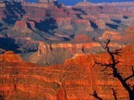 亚利桑那州大峡谷国家公园与云台山世界地质公园续订姐