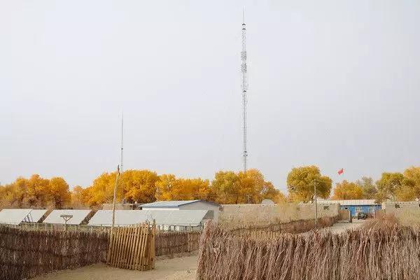 中国最后一个沙漠古村隐没在新疆 多年无人问津!