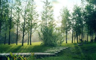 城市和自然和谐交融?新江与城悠澜容纳美好时光