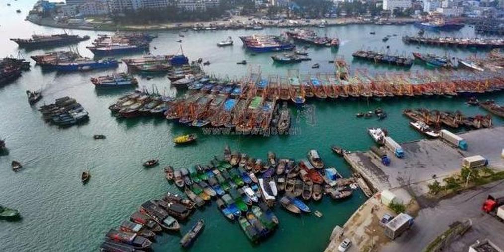 新增万亿产业规模 北部湾列入全国10大沿海渔港群
