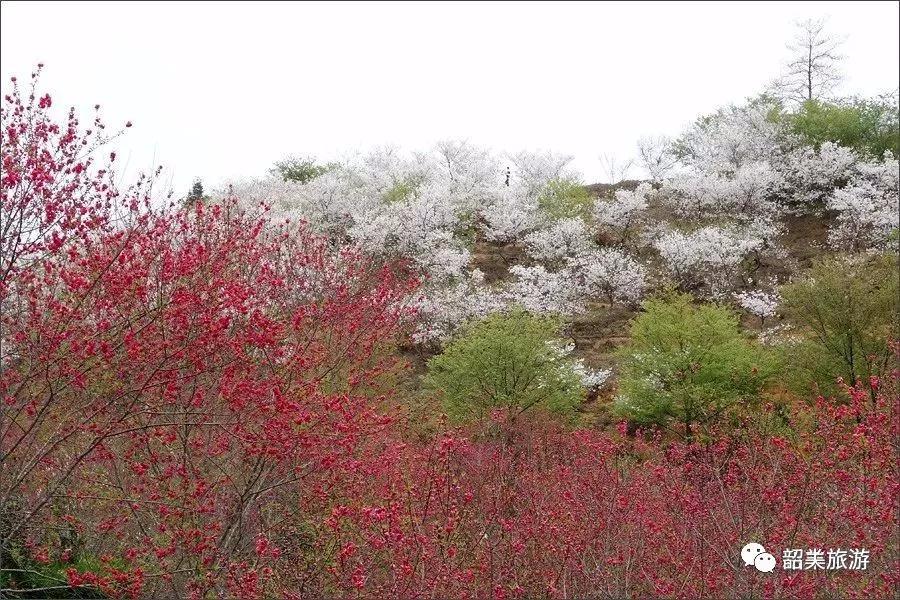 """春节如何玩转韶关最美的""""珠三角后花园""""?"""