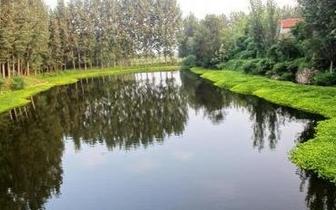 """福州实施水系全域治理 将进行""""一河一策""""整治"""