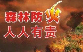 唐山召开冬春季森林防火现场会 部署森林防火工作