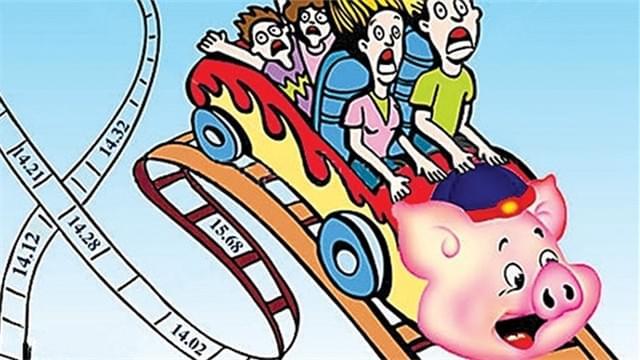 宁波养猪成本收益重回黄色预警 猪肉价如过山车