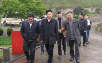 南川区长张兴益:推进城乡规划建设更快更好发展