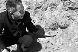 村民修路挖出鱼鳞状